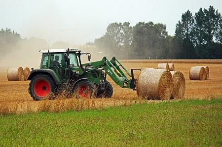 Landwirt, auf der Suche nach einem günstigen Kredit für Landwirte, bei der Arbeit
