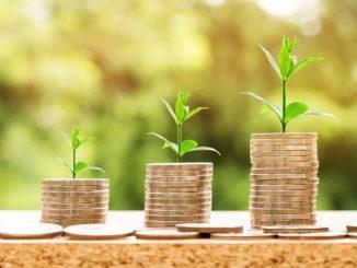 Steigende Gewinne durch sozial-ökologische Anlagen: die GLS Bank steht für eine nachhaltige und ökologische Geschäftspolitik