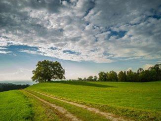 Schöne grüne Landschaft bei etwas bewölktem Himme: Die Pax-Bank eG steht für ein ökonomisches Handeln mit ethisch-nachhaltiger Zielsetzung