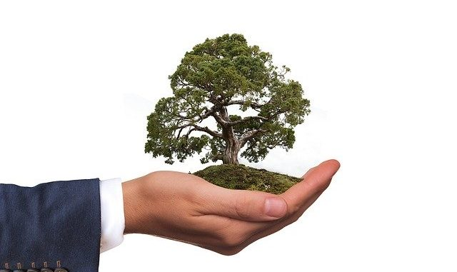 Hand, die die Umwelt schützen möchte: Die nachhaltige Die Triodos Bank möchte Mehrwerte für Mensch, Umwelt und Kultur schaffen!