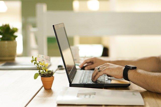 Mann in seinem Arbeitszimmer am Laptop, Pflanze auf dem Schreibtisch: Wenn Sie einen Kredit mit Sofortauszahlung benötigen, ist der Creditplus Sofortkredit eventuell genau der richtige Kredit für Sie!